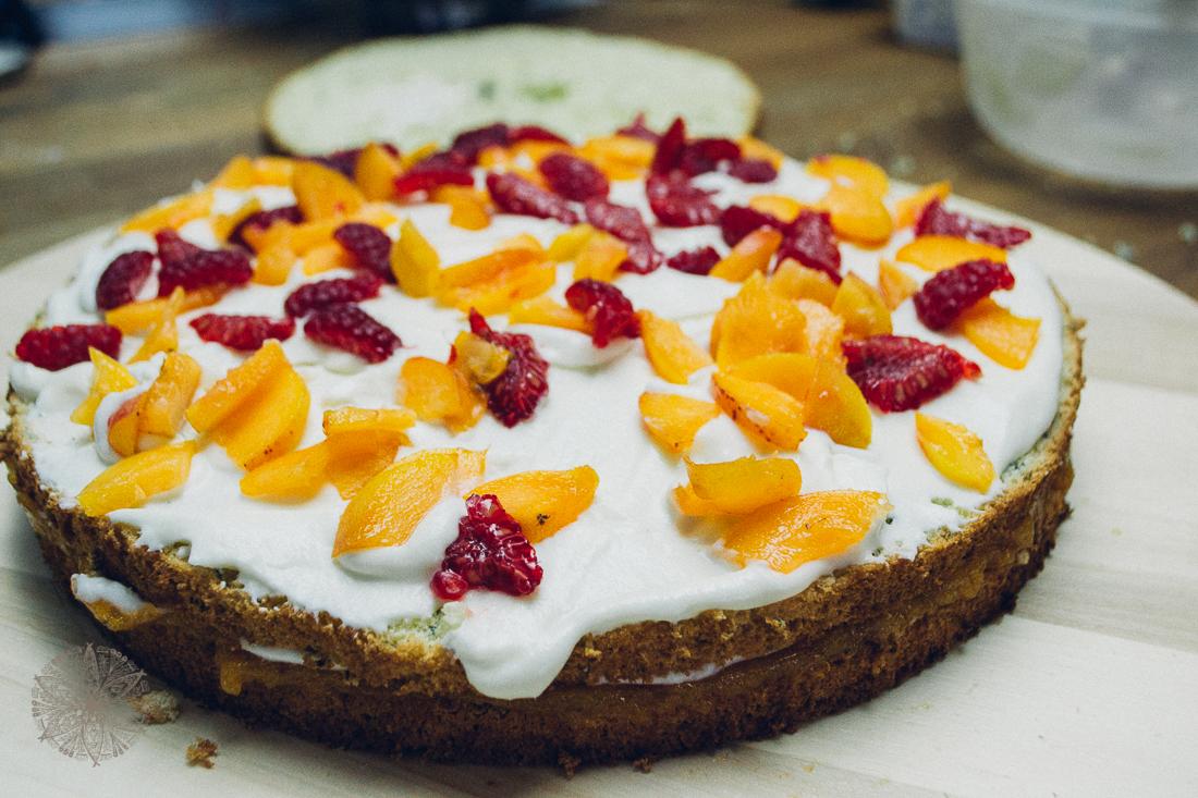 FrauBpunkt Aprikosen Himbeer Torte-21